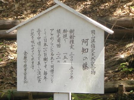 Ati_fuji_3