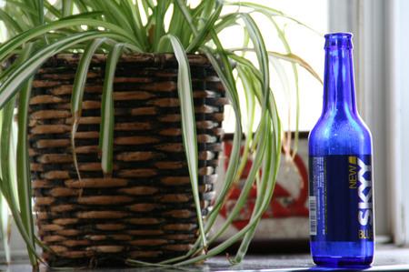Blue_bottle