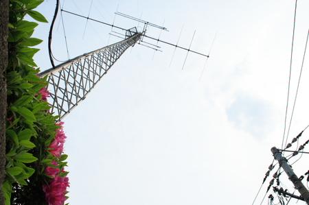 Img_3291tutuji_anten